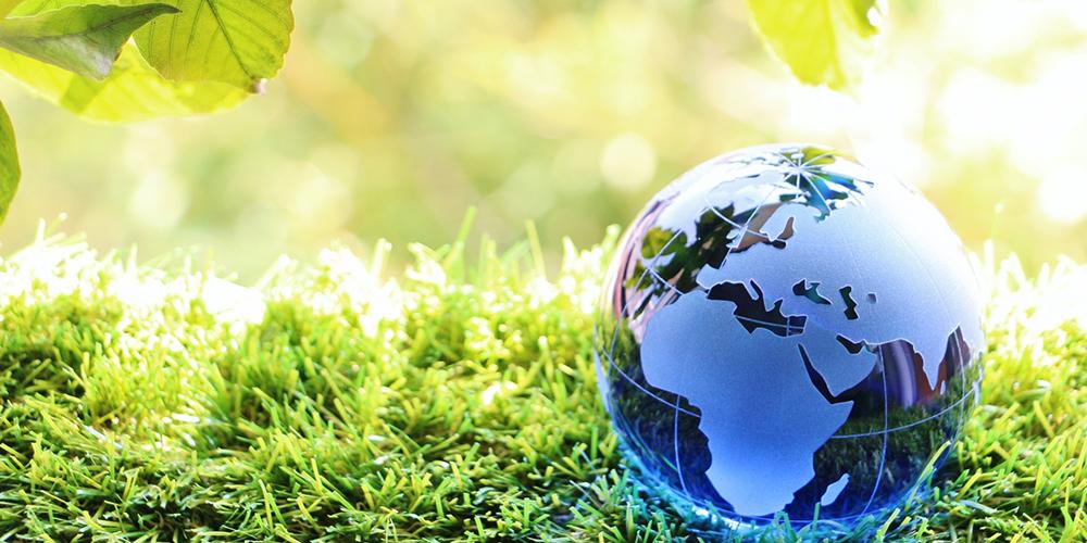 芝生の上に置かれたガラスの地球儀