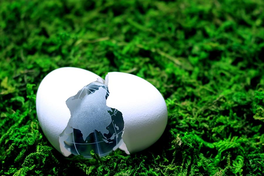 割れた卵の殻から出てきた地球儀
