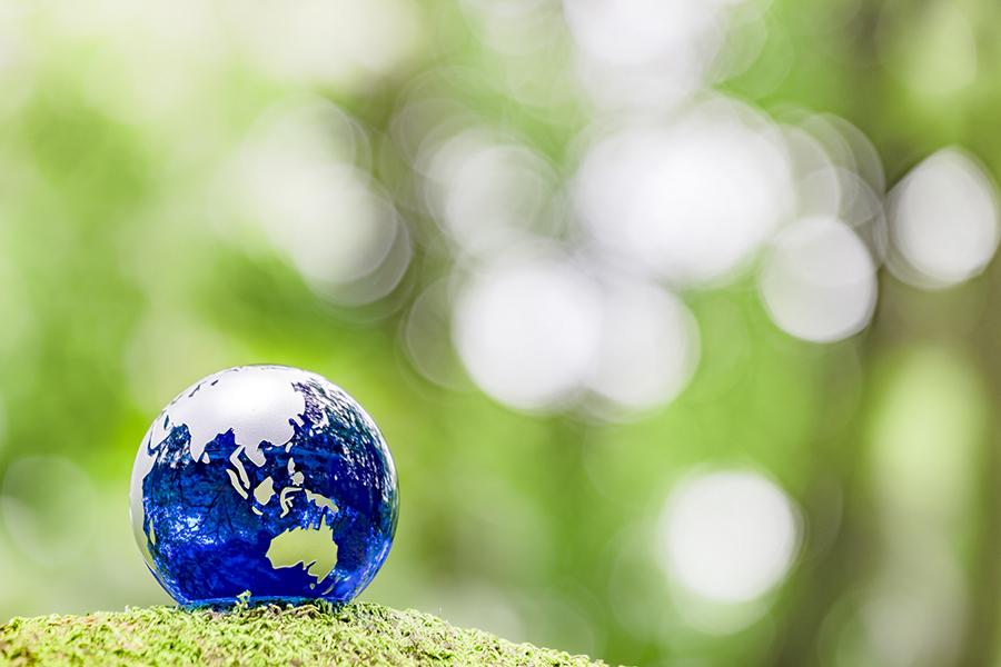 緑の森の中に置かれた地球儀